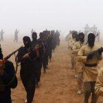 Extremismo islâmico nunca matou tanto