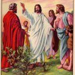 Santos Timóteo e Tito – Bispos e Dicípulos de Paulo