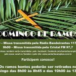 Participe da Celebração de Domingo de Ramos